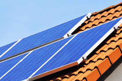 Photovoltaik Taubenschutz und Marderschutz