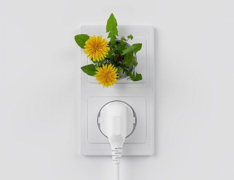 Lange Bearbeitungszeit Photovoltaik Förderung Bayern